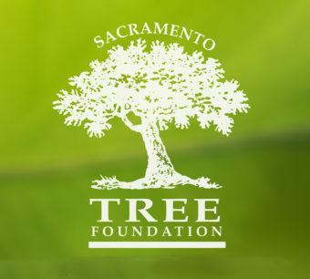 Sacramento Tree Foundation Logo
