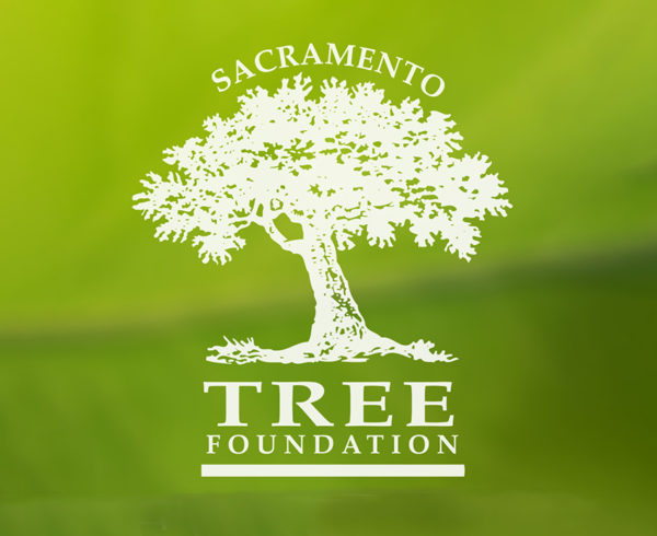Sacramento Tree Foundation Logo