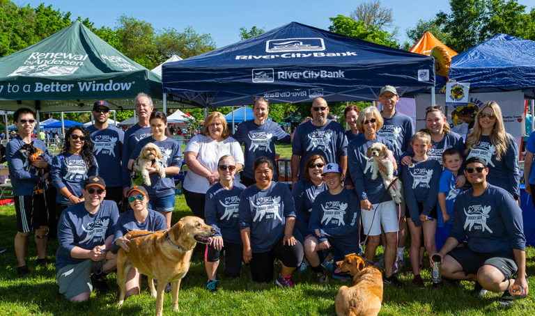 Photo of Team RCB at 2019 Doggy Dash