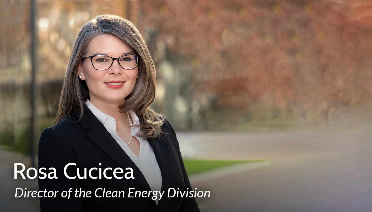 Rosa Cucicea, Director of Clean Energy Division